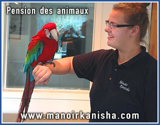 pension animaux